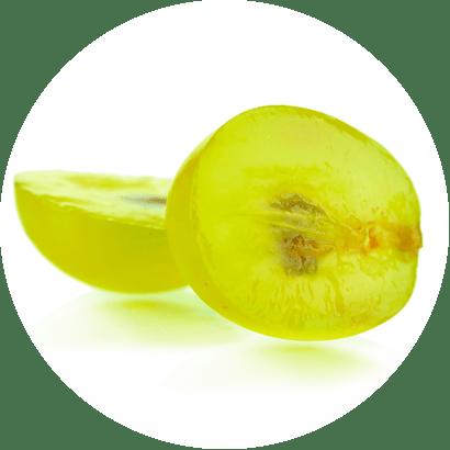olej z jadérek hroznového vína